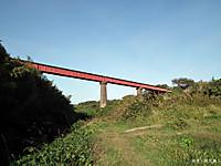 Mizunarikawa1