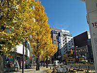 Machinaka1