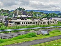 Miyagahama5