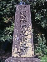 Nagashima4