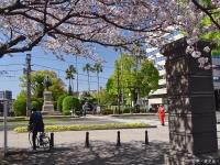 Sakura2_20190709194901